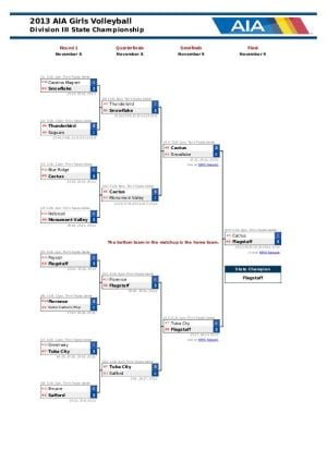 Div. III Girls Volleyball Bracket