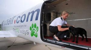 Paws up: All-pet airline hits skies