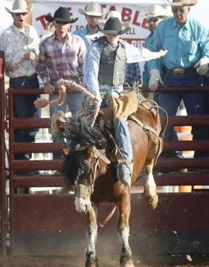 Gilbert Days Rodeo