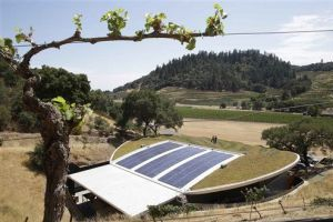 <p>In this photo taken Wednesday, July 16, 2014, a grape vine frames the living roof atop the Odette Estate winery with the Silverado Trail in the background in Napa, Calif. Odette Estate, which opened recently, is part of a small but blossoming trend of green-roofed wineries. Their roof combines 8,500 square feet of planted living roof with 2,500 square feet of solar panels. For wineries, green roofs help create the stable temperatures needed to store wine. (AP Photo/Eric Risberg)</p>