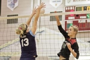OH DEER: Skyhawks find region title in grasp after epic match
