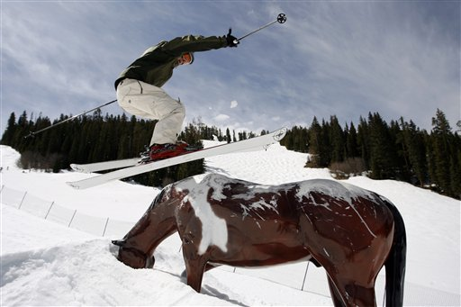 Snowboard Parks