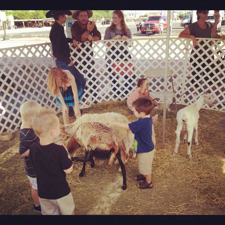 petting zoo