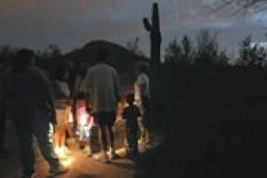Flashlight tours provide glimpses of summer at Desert Botanical Garden