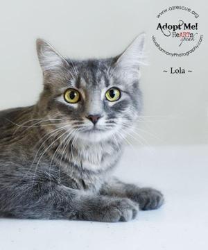 Take me home: Lola
