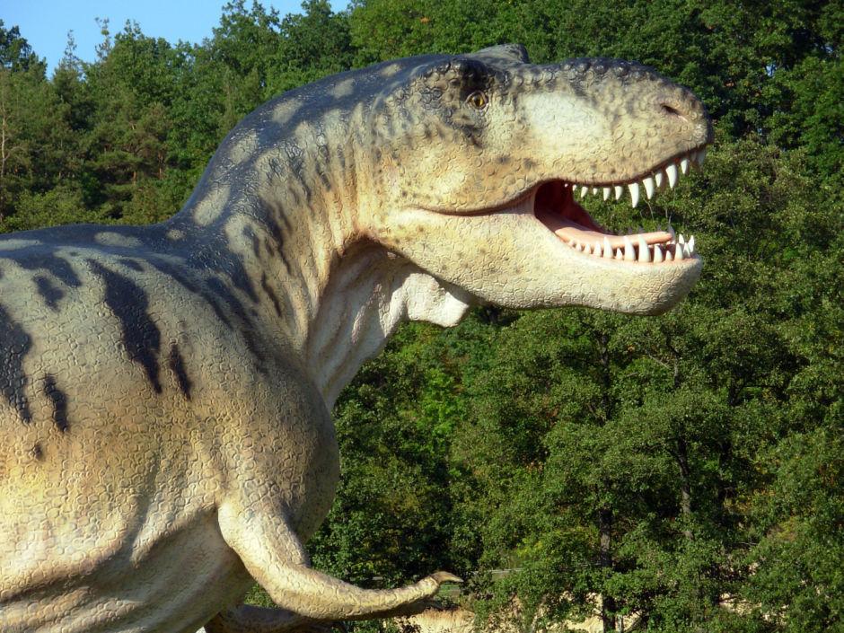 dinosaur replica
