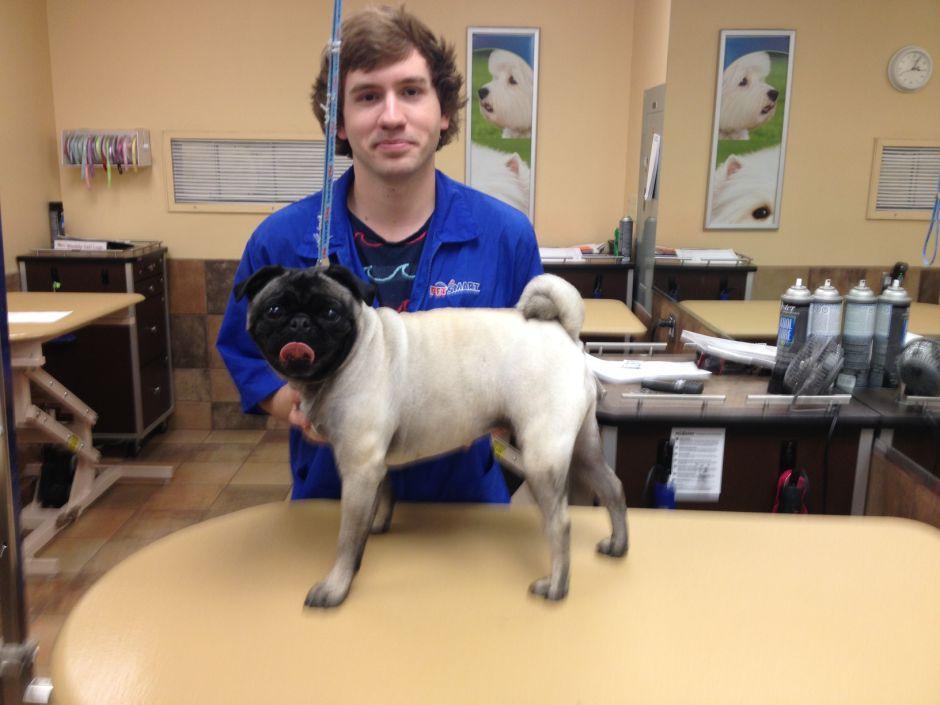 Best of Mesa 2014 Pet Groomer: Colton Schubert