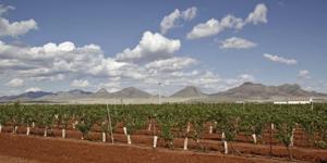 Travel Trip Arizona Wineries