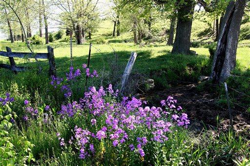 Gardening-Prairie Gardens
