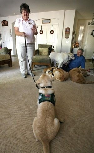 Couple help put guide dogs on paths to service