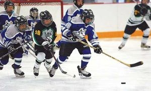 Coyotes' presence has boosted youth hockey