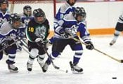 Coyotes' presence boosts Valley youth hockey