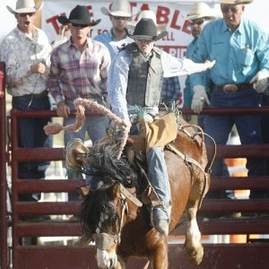Gilbert Days Rodeo