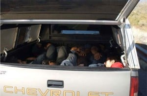 35 suspected illegal immigrants arrested