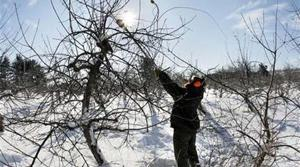 Shocking cold wave drops temps to 40 below