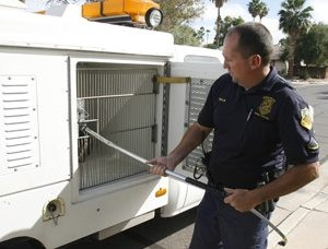 Mesa animal control strapped 