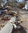Majority of Katrina's victims were elderly