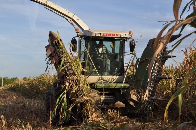 Reclaiming farmland
