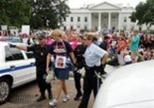 Sheehan arrested during anti-war protest