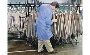 Fur trade back in business, scandal