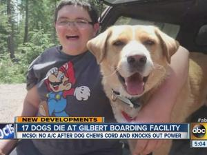Dogs die at boarding facility