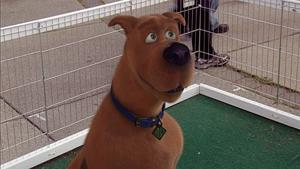 Those meddling kids and their dog 'Doo' it again