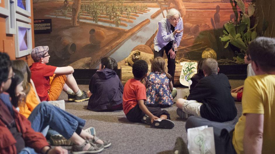 AZMNH Archaeology Overnight