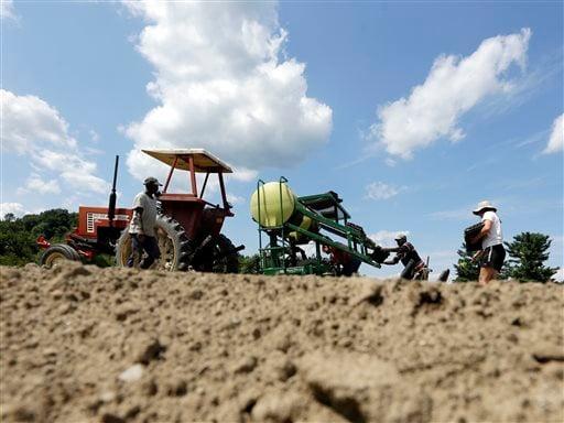 Food And Farm Naturally Grown