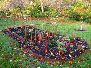 Gardening-Going Slow