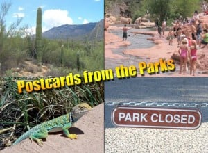 Postcards from the Parks
