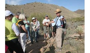 Hikes highlight Sonoran flora, fauna