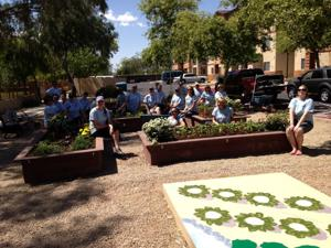 Garden restoration project