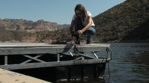Agencies warn boaters about mussels