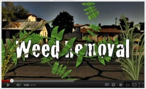 Screen Capture: City of Tempe Weed Removal Video