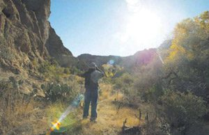 Volunteers conduct census of Arizona birds