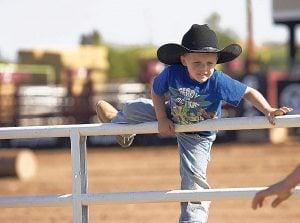 Gilbert Days Rodeo starts Wednesday