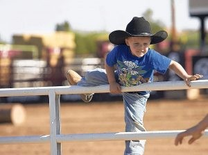 Gilbert Days Rodeo starts Wednesday