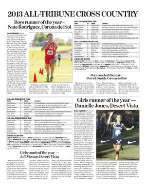 2013 All-Tribune Cross Country