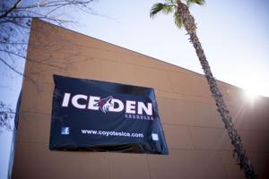 Ice Den