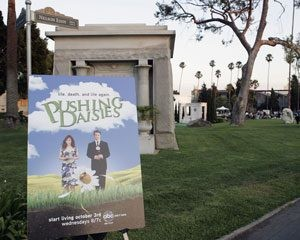 ABC pushes 'Daisies' with hopes for a blooming hit