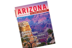 Arizona guide