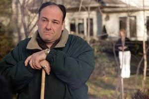 James Gandolfini looks past 'Sopranos'