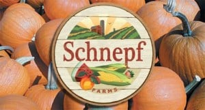 Rising theft hurting Schnepf Farms