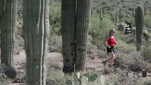 Take a hike: Hit trails and enjoy outdoors
