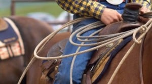 Round 'em up for Payson's historic rodeo