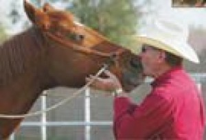 Texas-born trainer abandons macho approach to horses for a gentler way