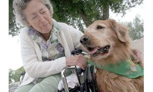 Pets on Wheels delivers big bundles of love