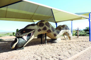 <p>A rattlesnake climber and tube slide is new at McDowell Mountain Regional Park.</p>
