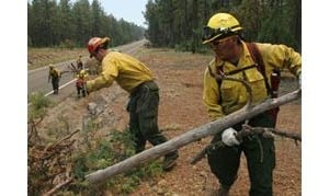 Plan in place to save Rim towns from fire