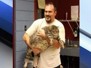 36-pound cat